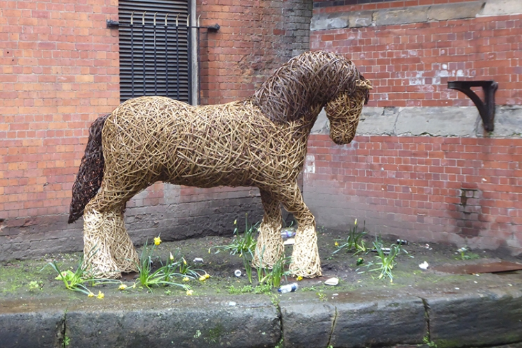 canal horse Manchester