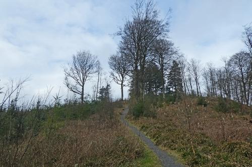 path through uphill byreburn wood