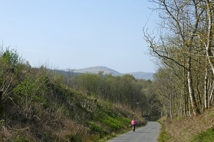Broomholm road back