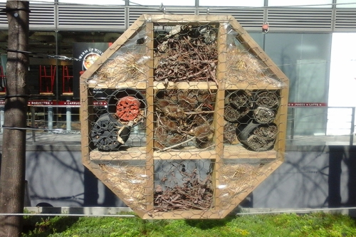 bug hotel euston road