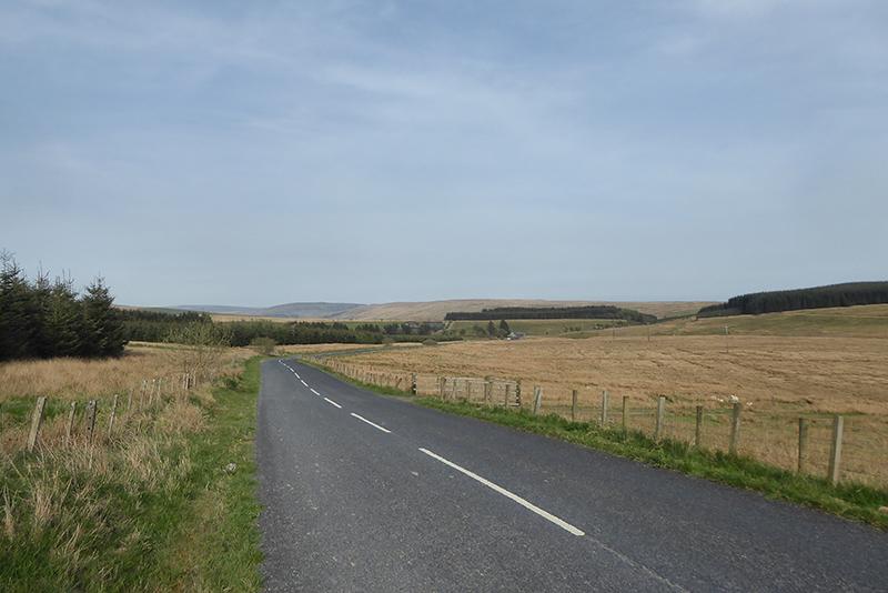 callister view