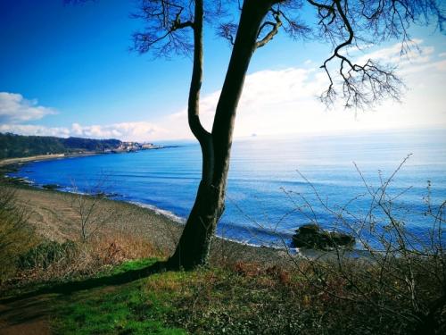 East wemyss Riviera