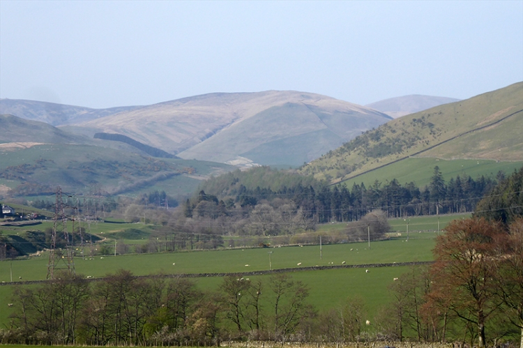 ewes valley view