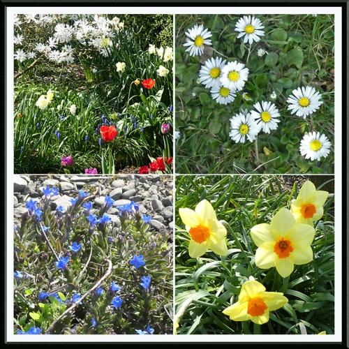 garden flower panel