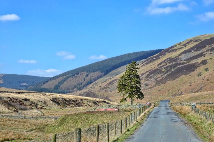 Road to Gordon Arms