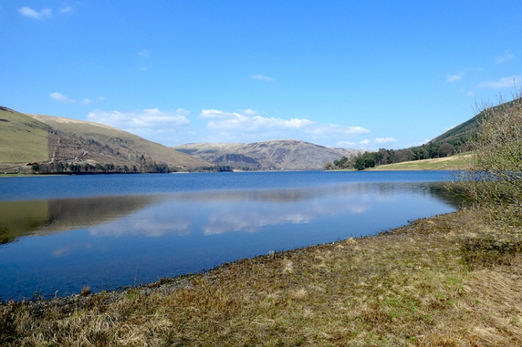 St Mary's Loch reflections (4)