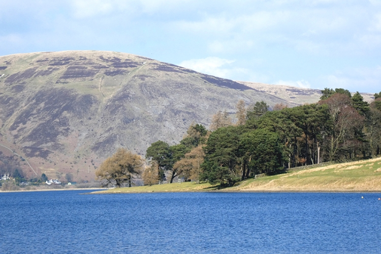 St Mary's Loch view (2)