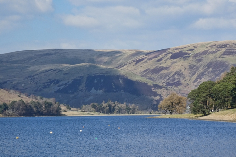 St Mary's Loch view