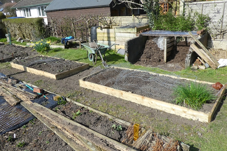 two veg beds