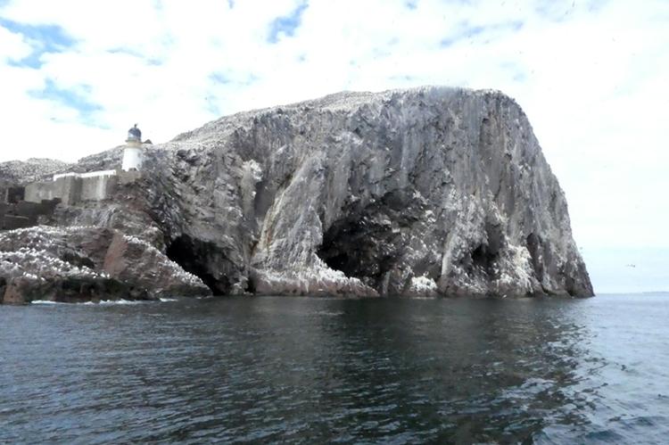 bass rock caves
