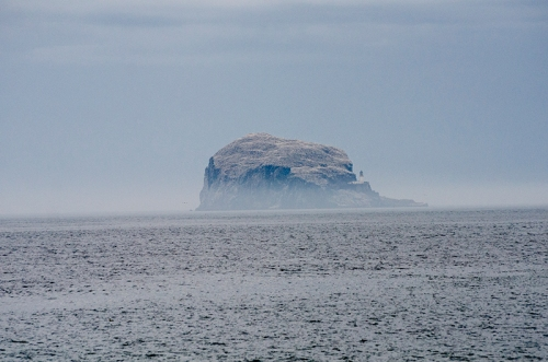 bass rock low mist