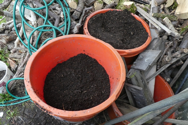 buckets of compost