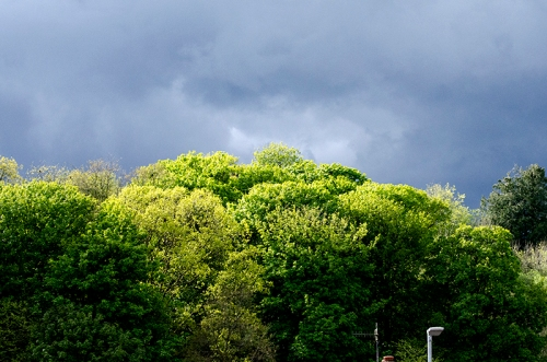 clouds over holmwood