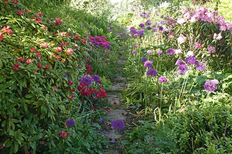 garden bed 10