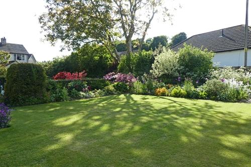 garden bed 11