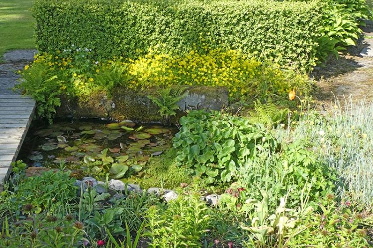 garden bed 6