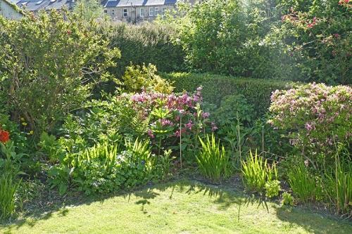 garden bed 8