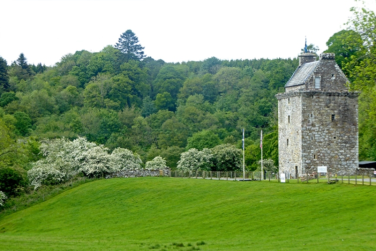 hollws tower and hawthorn