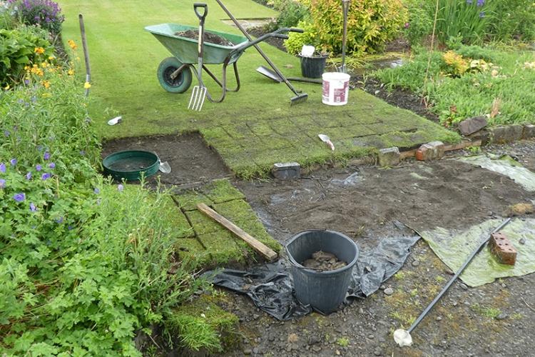 lawn renovation 5