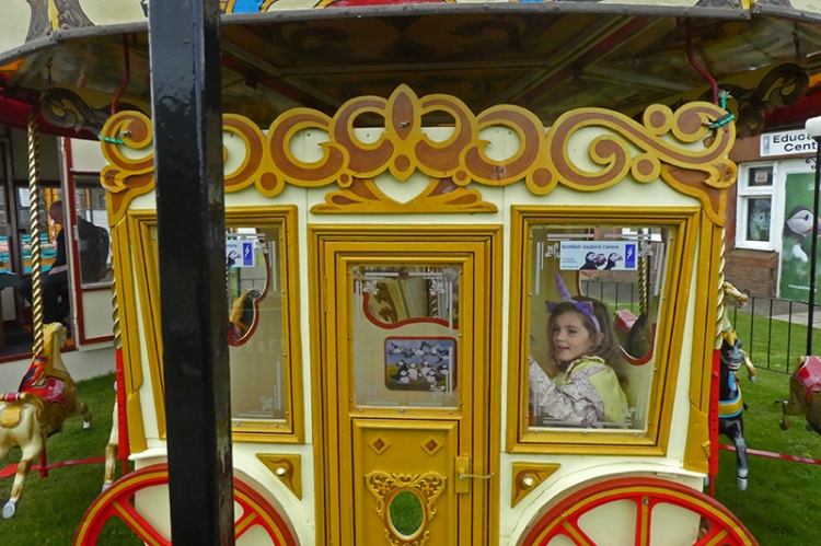 matilda on carousel NB close
