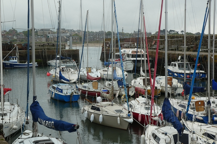 NB harbour
