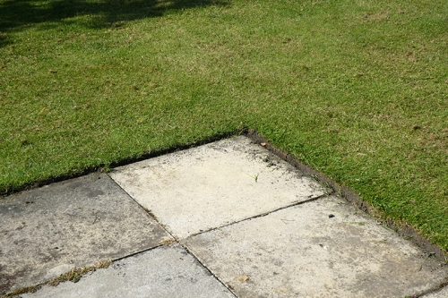 neat lawn edging