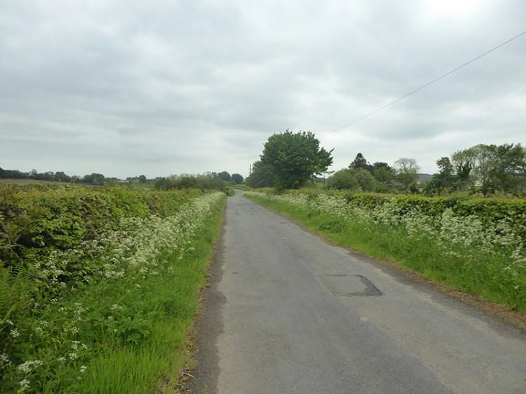 old road tarras