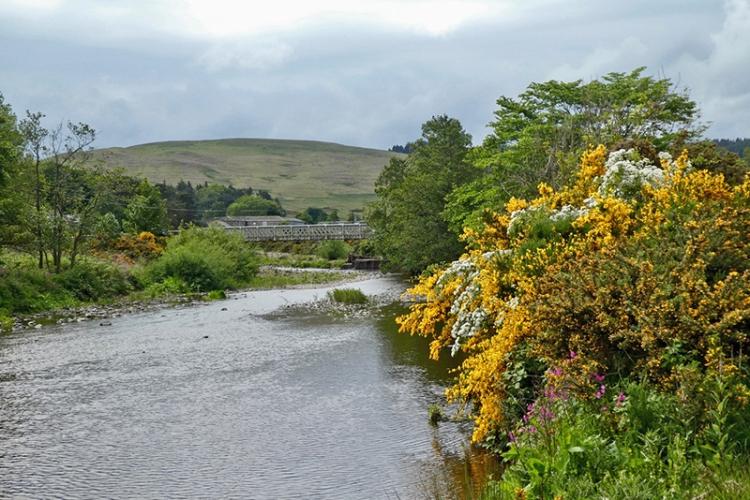 River Breamish near Ingram village