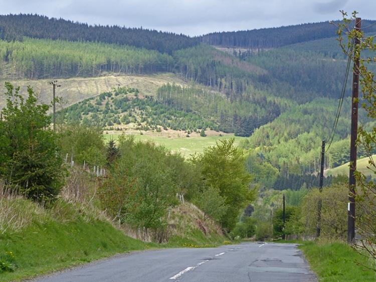 road to burnfoot