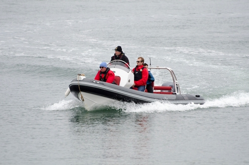 speedy boat NB