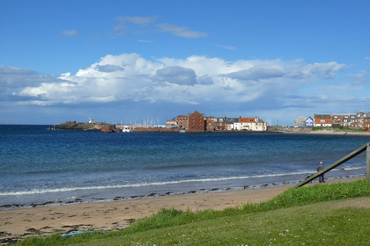 view of the harbour NB