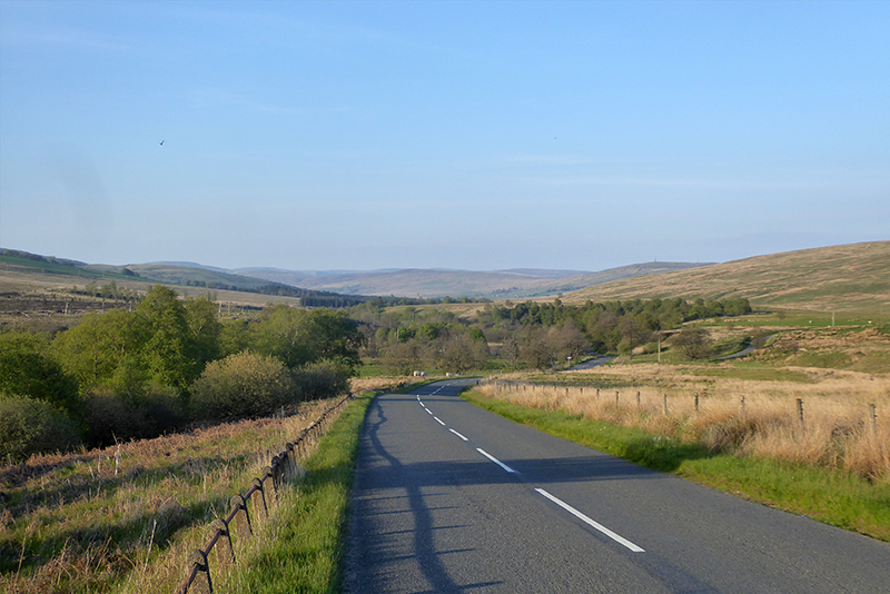 wauchope road evening
