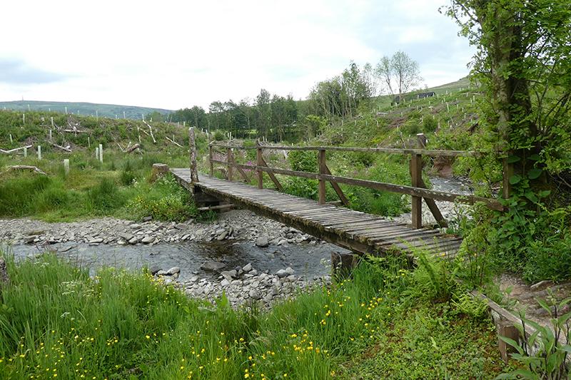 becks bridge june
