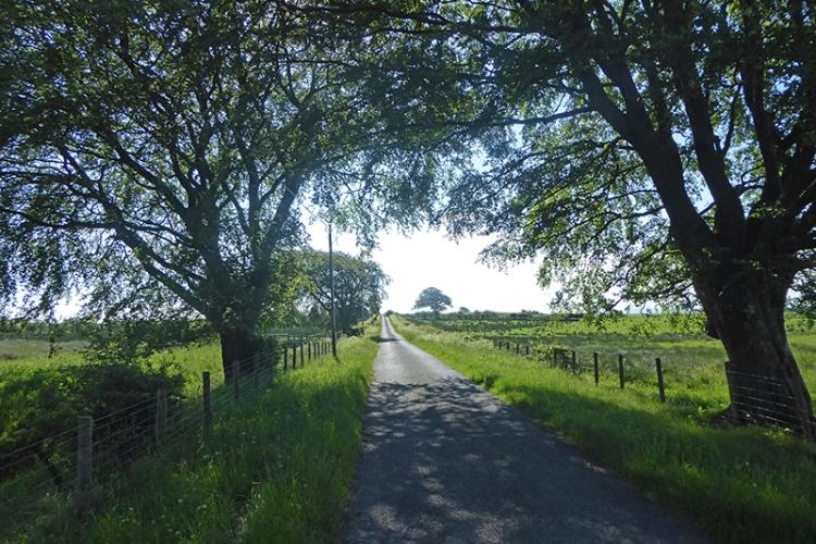 Chapelhill road