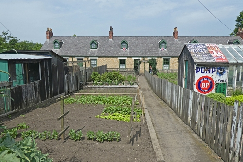 colliery garden