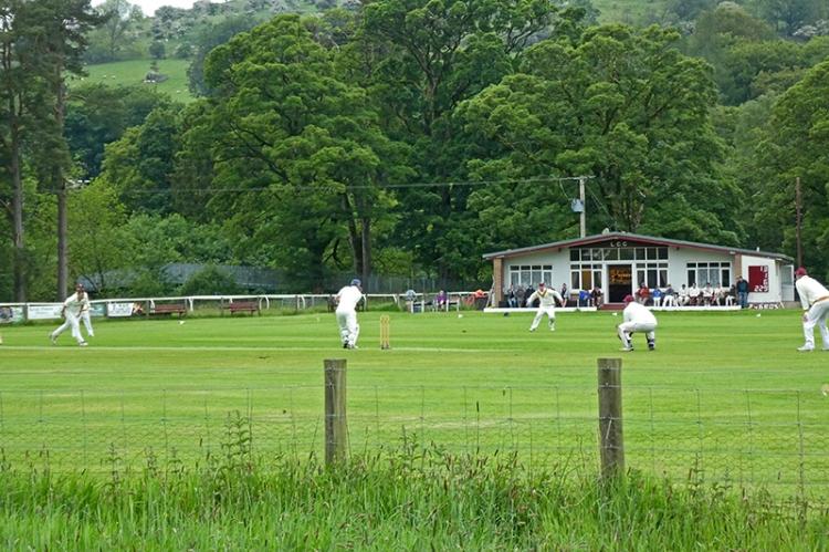 cricket in prgress