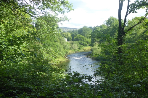 river esk at Irvine hiuse june