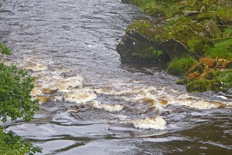 water in river hollows