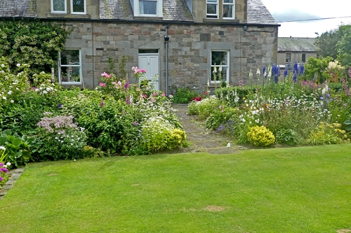 front lawn border