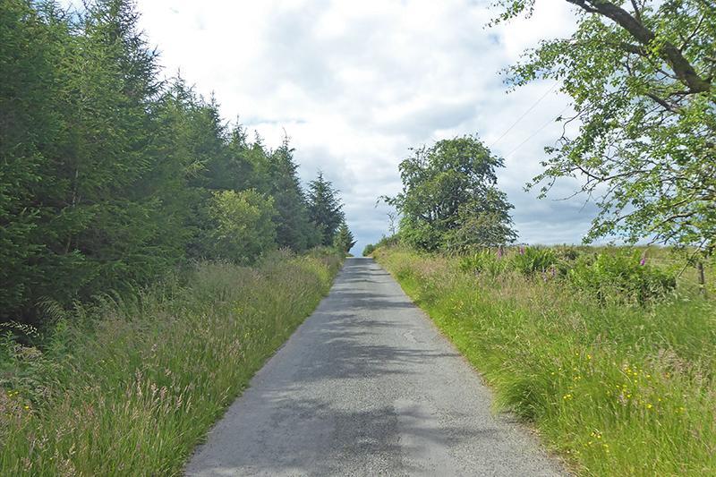 kerr wood road