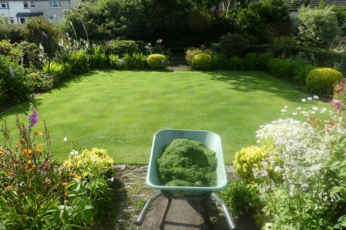 mown front lawn and barrow