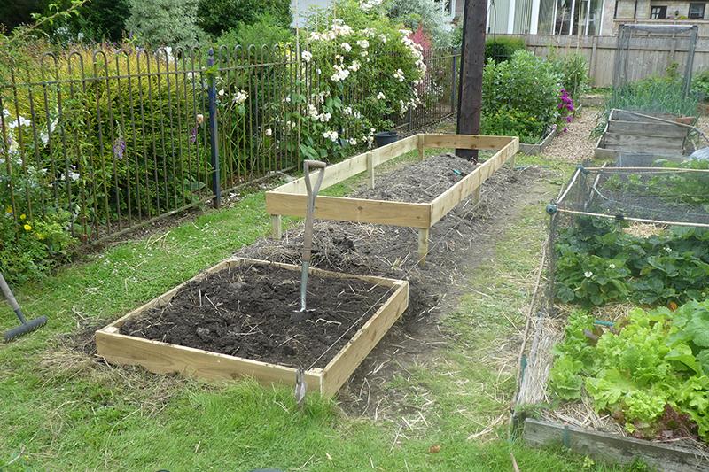 new veg beds