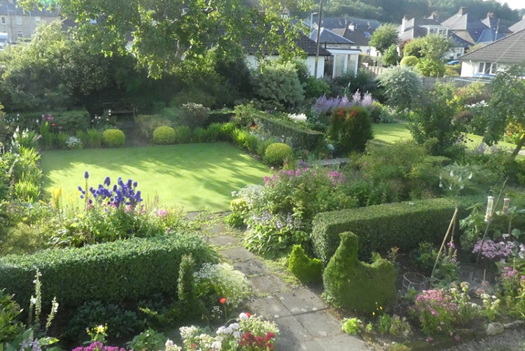 the garden in the evening