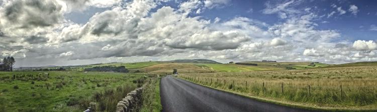 callister panorama