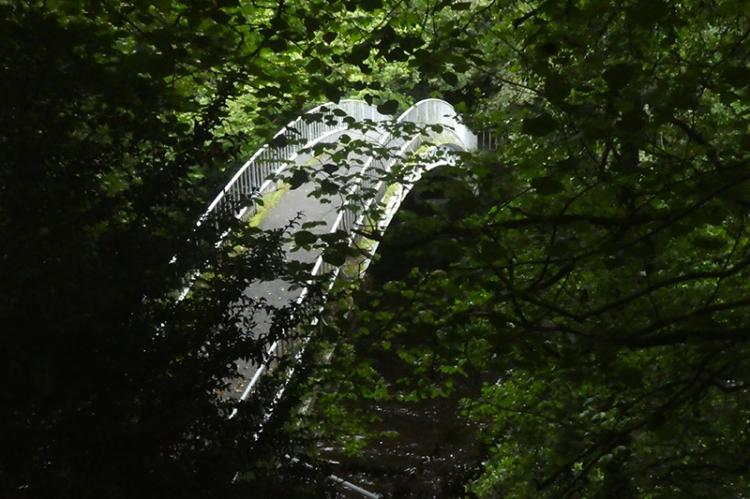 duchess bridge in shade