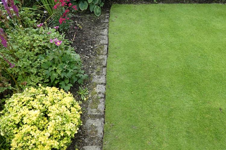 edged lawn