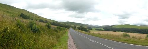 ewes panorama