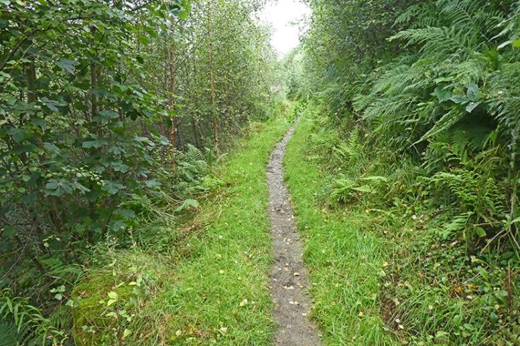 Gaskells path