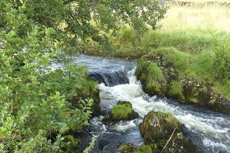 glendinning waterfall