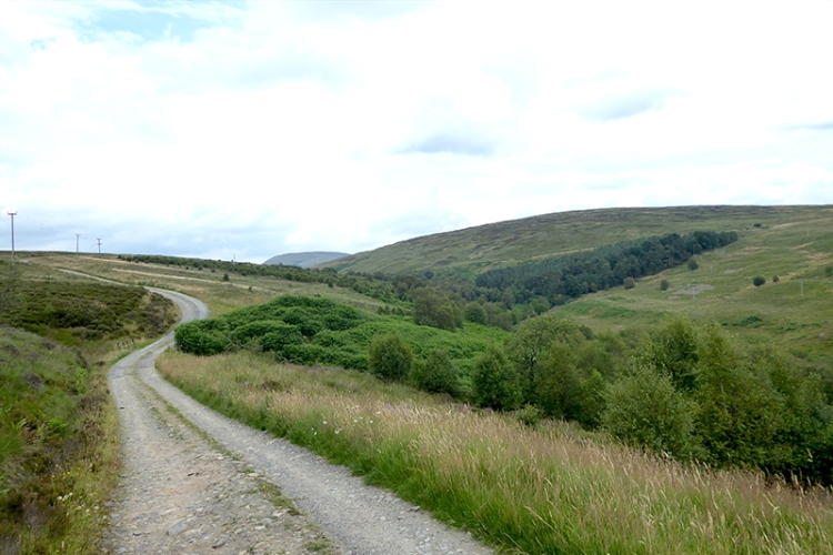 Middlemoss road